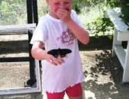 Olivia visits the Butterfly Farm, by Robert Ward