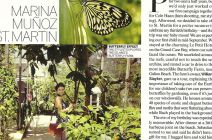 Press Clip: Butterfly Effect... From VOGUE June 2012